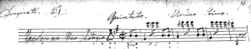 "Excerpt of the Violino Primo from Dragonetti's ""Famous Solo in e minor"""